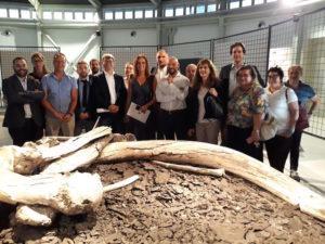 museo Paleontologico Pietrafitta